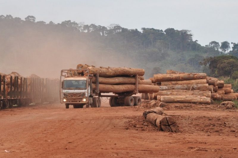 Logs-being-loaded-for-transport-by-train-Gabon-e1457339334914