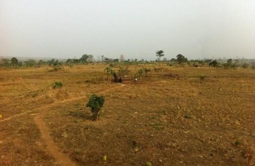 PBL_-degraded-vegetation-on-deforested-area-e1457605240920