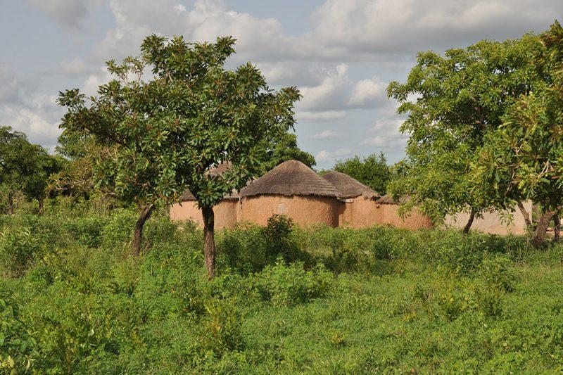 Noord-Ghana (24)